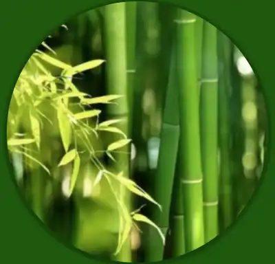 SCRUB VISO (con Estratto di Bambù)